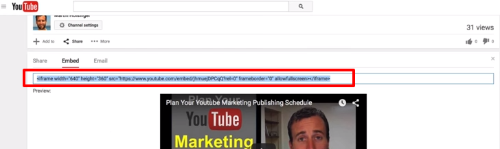 how to copy the youtube marketing embed code to put it on a wordpress post