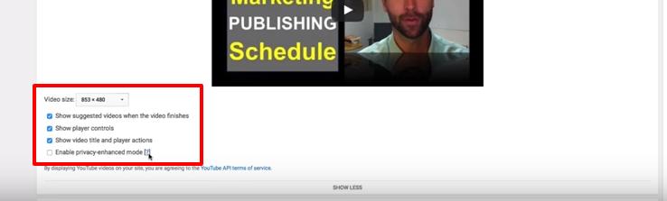 Embed a Video In WordPress Website - youtube marketing tutorial